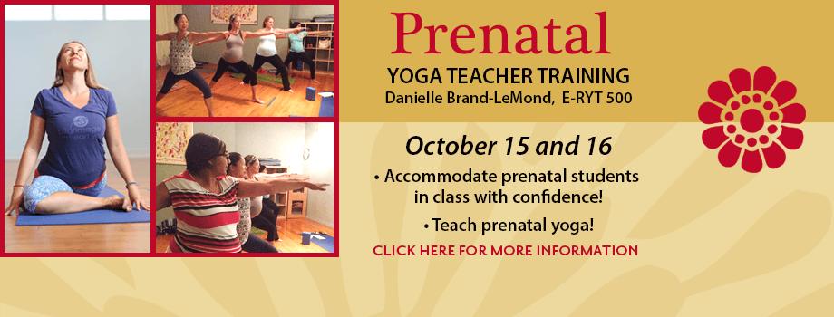 Prental Teacher Training