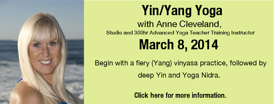Banner - YinYan Yoga_March 2014